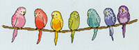 Row Of...Budgies Kit
