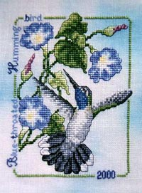 2000 Blue-Throated Hummingbird