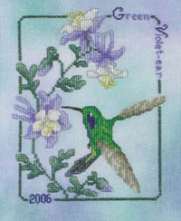 2006 Green Violet-ear Hummingbird