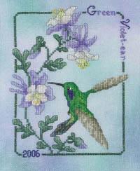 2006 Green Violet-ear Hummingbird