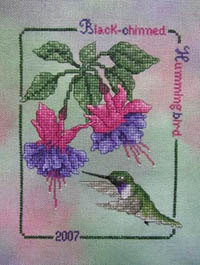 2007 Black Chin Hummingbird