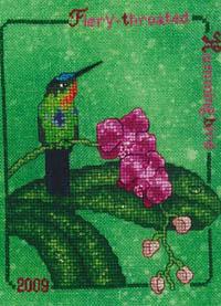 2009 Fiery-Throated Hummingbird