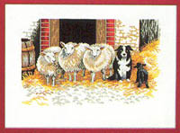 Farm Yard Sheep Kit