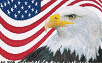 American Eagle Kit