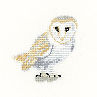 Little Friends Barn Owl Kit