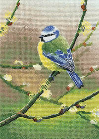 Blue Tit by Nigel Artingstal Kit