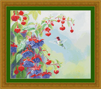 Anna in Fuschia - Hummingbird