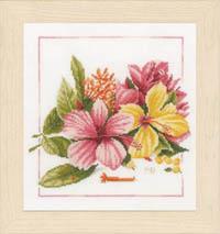Amaryllis Bouquet Kit