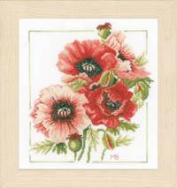 Anemone Bouquet  Kit