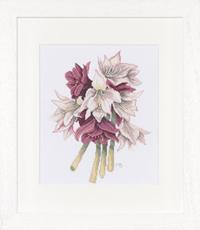 Amaryllis Bouquet Kit by Marjolein Bastin
