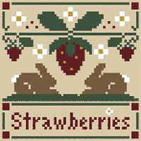 Fruits - Strawberries Kit