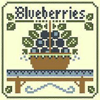 Fruits - Blueberries Kit