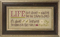 Dance In The Rain Inspirational Boxer