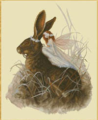 Hare Fairy