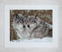 Wolves Kit