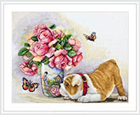 Bulldog and Butterflies Kit
