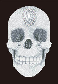 Crystal Skull  - Diamond Dotz Kit