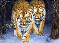 Stalking Tigers - No Count X-Stitch Kit