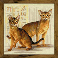 Abyssinian Cats Kit