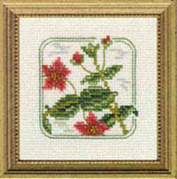 Carolyn's Meadow -Scarlet Pimpernel Kit