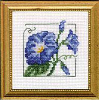 Carolyn's Garden - Morning Glory Kit