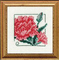 Carolyn's Garden - Carnation Kit