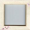 Coneflowers Frame