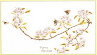 Bees and Blossoms Kit