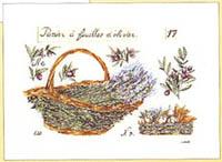 Basket of Lavender Kit