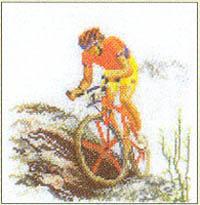 Biking Kit