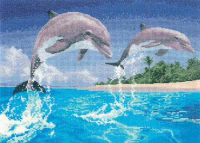 Power and Grace - Dolphins