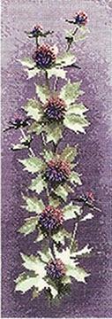 Flower Panels - Sea Holly