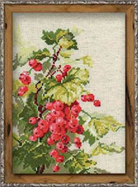 Red Currant Kit