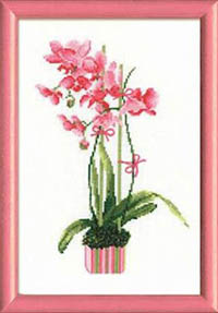 Pink Orchid Kit